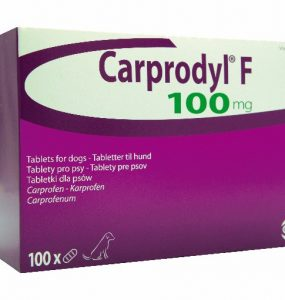 39344-carprodyl-100mg
