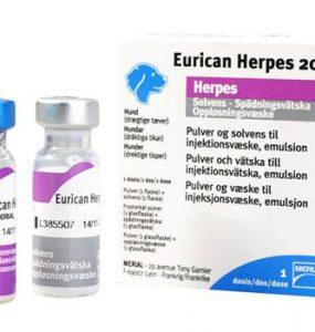eurican_herpes