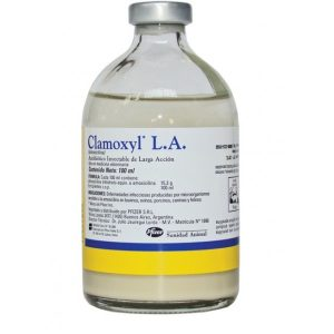 productimage-picture-clamoxyl-la-injection-100ml-4732
