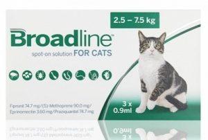 Broadline-spot-on-large-cats