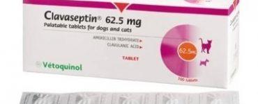 3931-clavaseptin-tablets-62-5mg